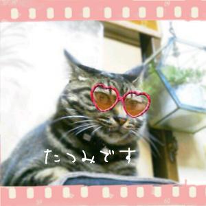 2012-03-28_17.10.23.jpg